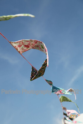 IMG 6040 